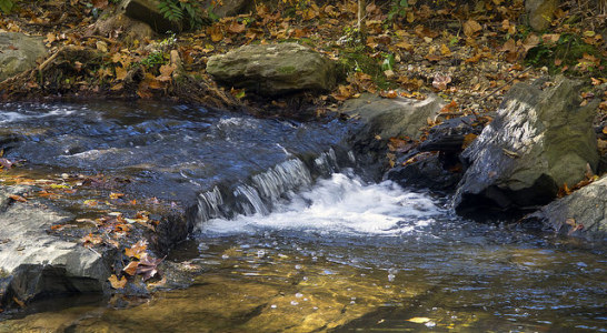"""NC Land Conservation Offers Protection From Another """"Flint"""""""