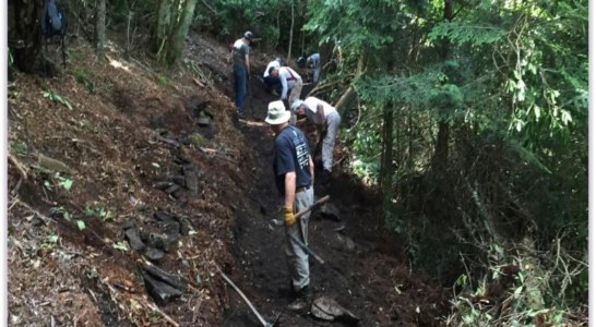 National Trails Day Celebration Includes Mountains-to-Sea Trail Section Opening