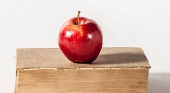 Thank Your Teachers: Teacher Appreciation Week in NC