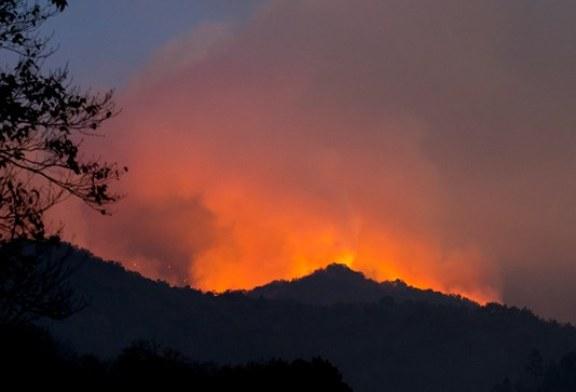 Trails Reopen after devastating wildfires