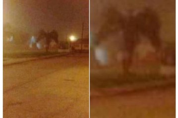 People Can't Tell If This Photo Shows a Demon, an Angel . . . or a Palm Tree?
