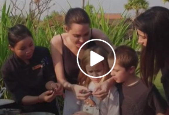 Watch Angelina Jolie and Her Kids Eat Tarantulas and Other Bugs