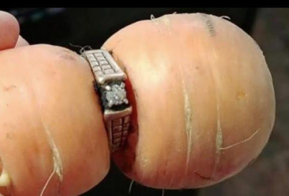 A Woman Lost Her Engagement Ring, and Found It 13 Years Later in a Carrot