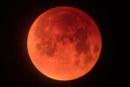 Lunar Eclipse Event Free to Public