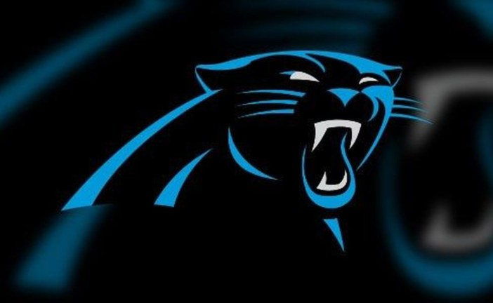SMES Opens New Playground Partially Funded by Carolina Panthers